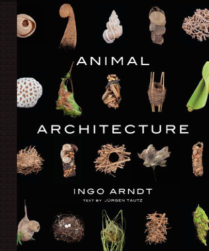 Animal Architecture (book)