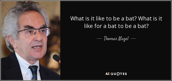 Thomas Nagel quote: What is it like to be a bat? What is...