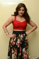 Telugu Film Actress Gallery: Nikesha Patel Photos Gallery