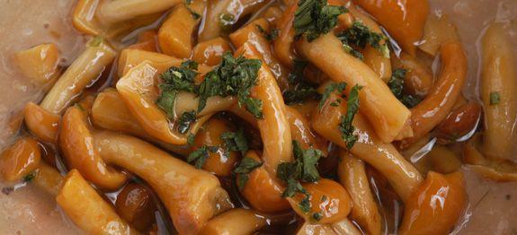 Ricetta Crema di fagioli con funghi chiodini uno dei migliori Primi di funghi della cucina italiana. Il livello di difficoltà è medio.