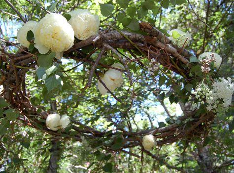 Flowers used:  Peonies  Chocolate cosmos  Jasmine  Blackberries  Eucalyptus  Garden roses  Scabiosa  Nigella  Mock orange  Veronica  Dusty Miller  Dogwood