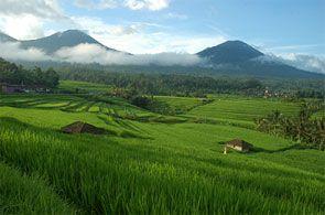 Perjalanan menuju tempat wisata menarik air terjun peukan biluy dari kota Banda Aceh kita akan disajikan indahnya pemandangan desa-desa serta areal persawahan dengan latar belakang alam berupa jajaran bukit barisan terlihat dari kejauhan.