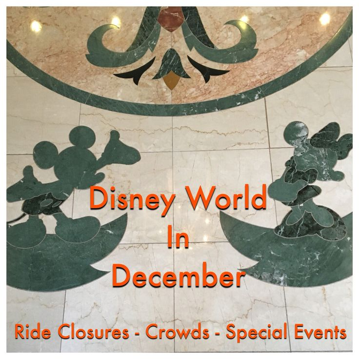 Disney World Tips & Secrets - Disney World in December / Ride closures, attraction refurbishments, crowd warnings & special events in one easy list at http://www.buildabettermousetrip.com/wdw-december-crowds-closures-special-events/