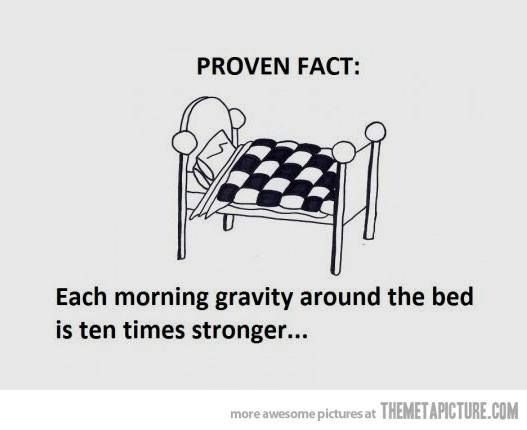 #Gravity #Bed #Morning