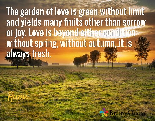 Garden Love Quotes Gorgeous Quote Garden Love  Page 2  The Best Love Quotes