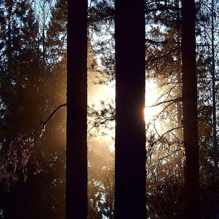 Auringonlasku sunset autumn syksy