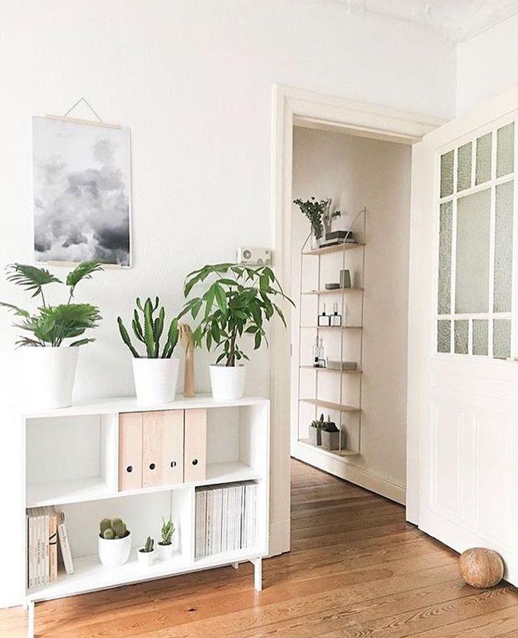 """Gefällt 773 Mal, 3 Kommentare - SoLebIch (@solebich) auf Instagram: """"Ein Traum in Weiß ☁️✉️ wird noch schöner mit einer kleinen Auswahl an Zimmerpflanzen Chapeau an…"""""""