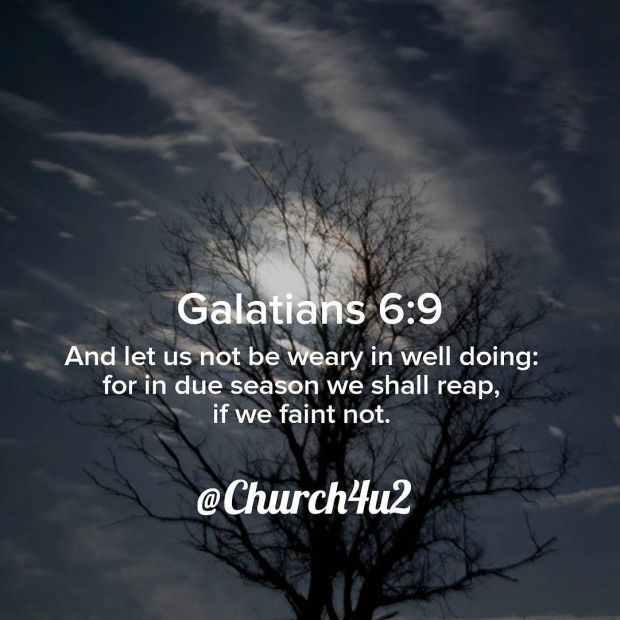 Galatians 6-9 And let us not be weary in well doing: for in due season we shall reap if we faint not.  View on Instagram http://ift.tt/2wmYBLu  Filed under: All - Bible Verse Pic Tagged: IFTTT Instagram