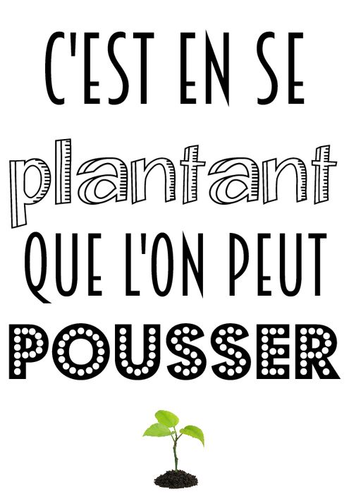 Les 25 meilleures id es de la cat gorie citations for Proverbe cuisine humour