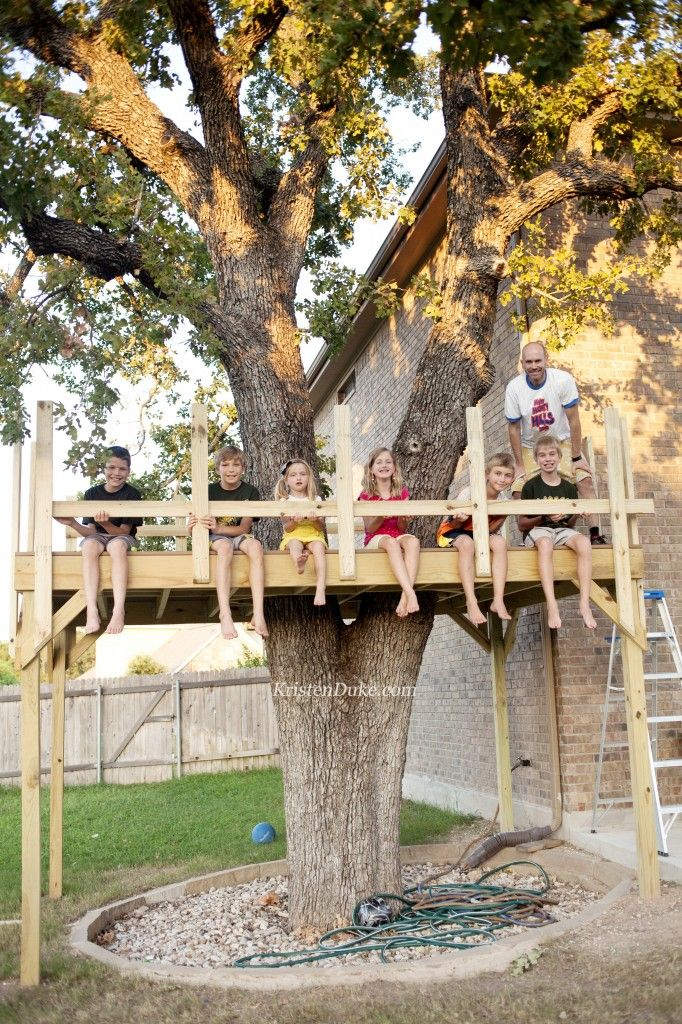 264 best outdoors creating fun play areas for kids for Best backyard tree houses