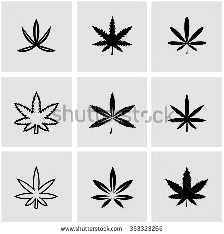 40 Best Mj Images On Pinterest Cannabis Plant Hemp And Herbs