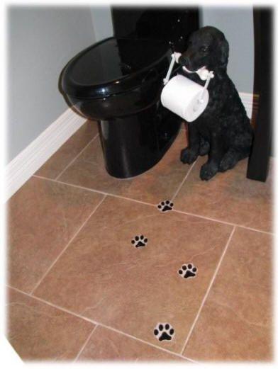 Paw-print tiles and dog TP holder!