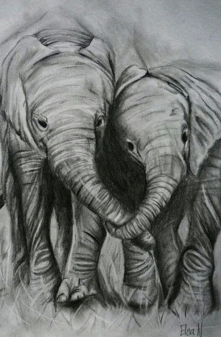 """Elephants"" Drawing by @elsa_creative on instagram"