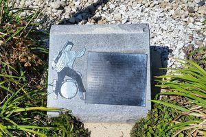 Elvis Karate Fight Plaque in Madison Wisconsin