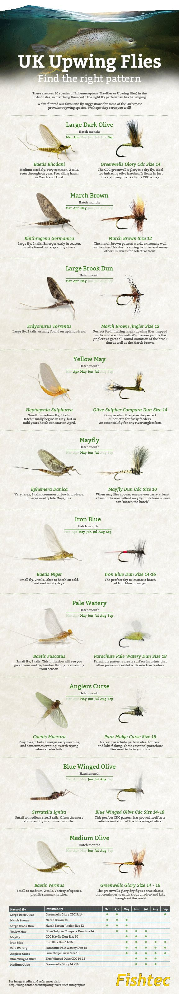 Fly fishing infographic upwing flies uk