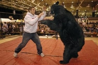 Wrestling bears: Usually a bad idea, in some places prohibited.
