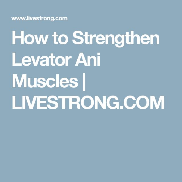 How to Strengthen Levator Ani Muscles | LIVESTRONG.COM