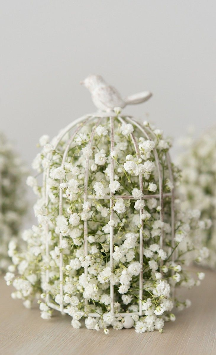little decorative birdcage filled with baby's breath. how sweet