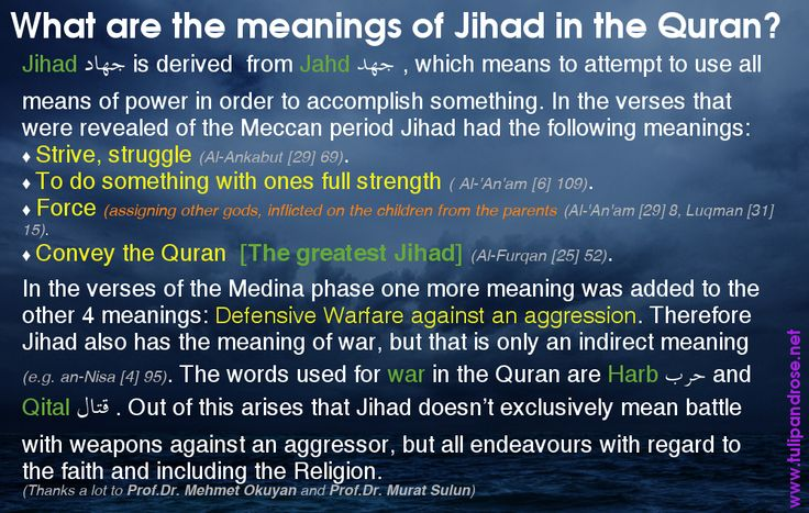 about jihad 15 misquotes from the koran essay Free islam papers, essays, and research papers tension between the west and islam - the tension between the west and islam has become a hot topic lately but the conflict between the two has always been there, and is illustrate through the works of al-farabi, nilufar gole, and sayyid qutb.