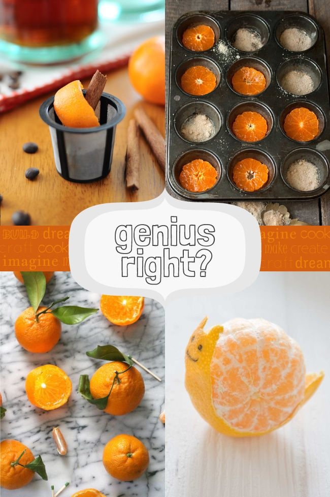 Genius, Right? 25 Amazing Clementine Ideas www.theminiaturemoose.com