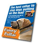The Canny Collar - the best collar!