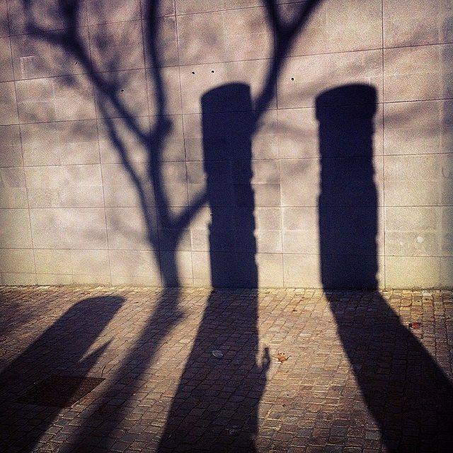 [indovinello post prandiale] Ombre artistiche (3) sui muri di Bologna (con tanto di albero intruso).