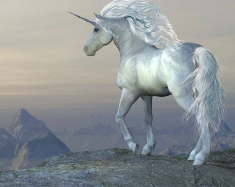 UNICORN :: A CREATURE OF MANY POWERS