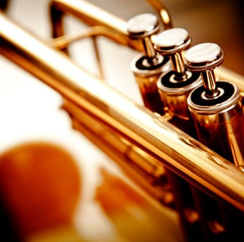 The trumpet...most beautiful thing out there