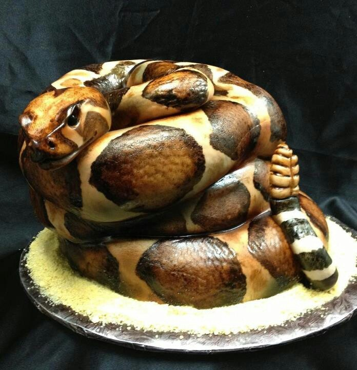 Fear factor party ideas. Snake cake! Tucker would never let us cut into it!