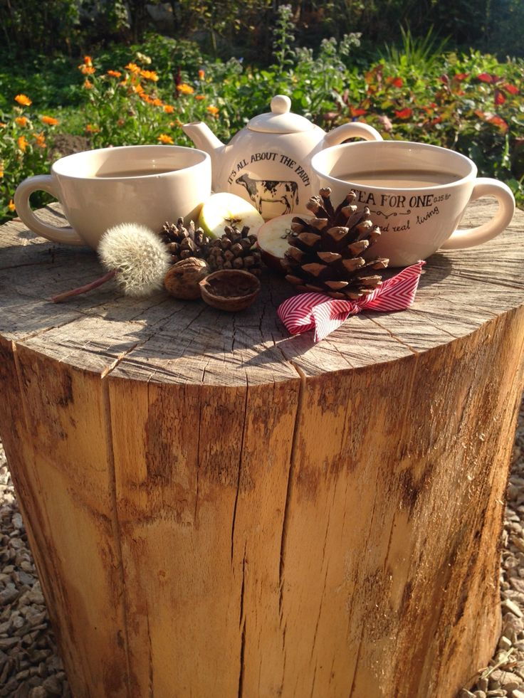 Coffe break by Bella wood