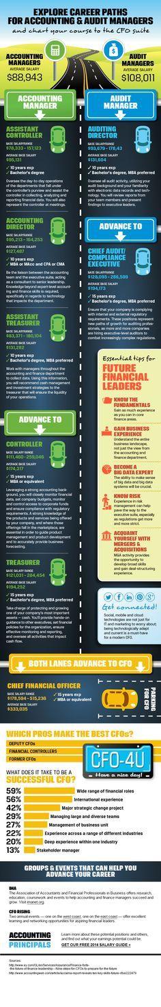 23 best Accountant images on Pinterest Accountant humor - assistant controller job description