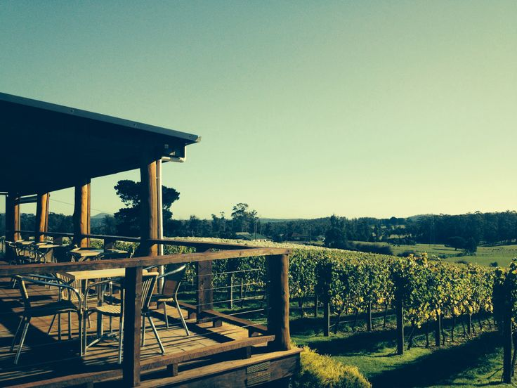 Glorious Autumn day at the cellar door