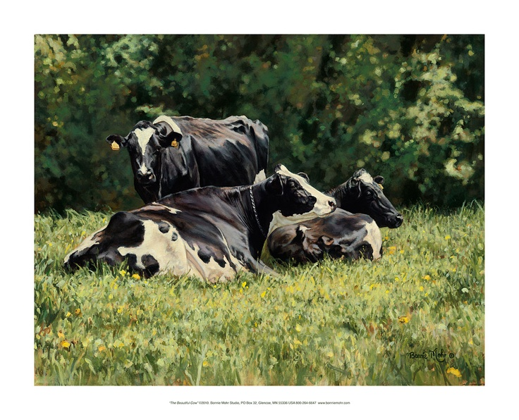 The Beautiful Cow Print   Art Featuring Three Beautiful Holstein Cows  Laying In A Green Pasture In The Spring By Rural American Artist, Bonnie  Mohr