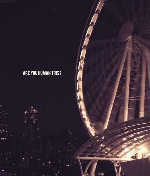 Divergent movie tris and four ferris wheel