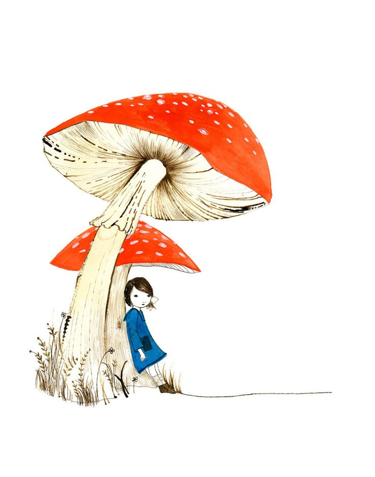 Image of toadstool