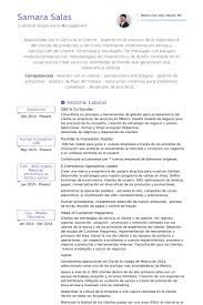 Image result for sample resume for ceo employee