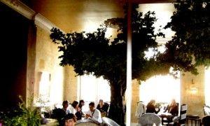 Le Petit Bois et l'Autre Petit Bois – Bordeaux