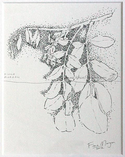 MOONLIT LEAVES Nature illustration ORIGINAL Matted Botanical Drawing Black & White pen ink zen mindfulness by WhereFishSing, $32.00