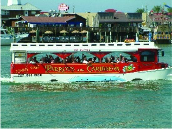 George Town, Cayman Islands | Cayman Islands Duck Boat Tour in George Town - Picture of George Town ...