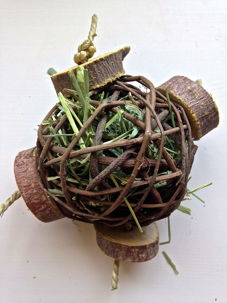 """4"""" Natural Vine Balls filled with tasty timothy hay with added apple wood coins for an added bite! these will keep your pets chewing for days.  Suitable for Chinchillas, Rabbits, Degus, Rats and other small furies"""