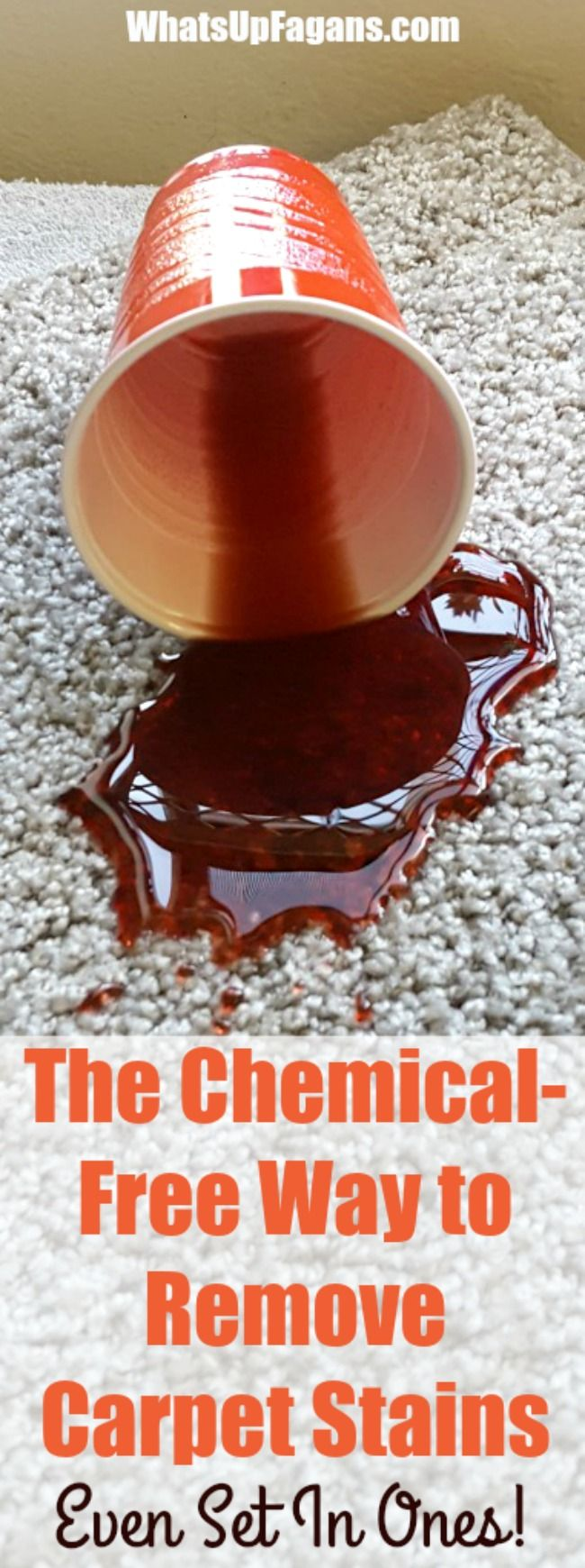 Best 25+ Clean carpet stains ideas on Pinterest