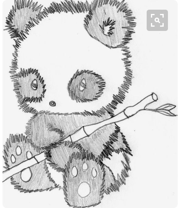 Panda Pencil Sketch Looks Fuzzy With Images Cute Drawings