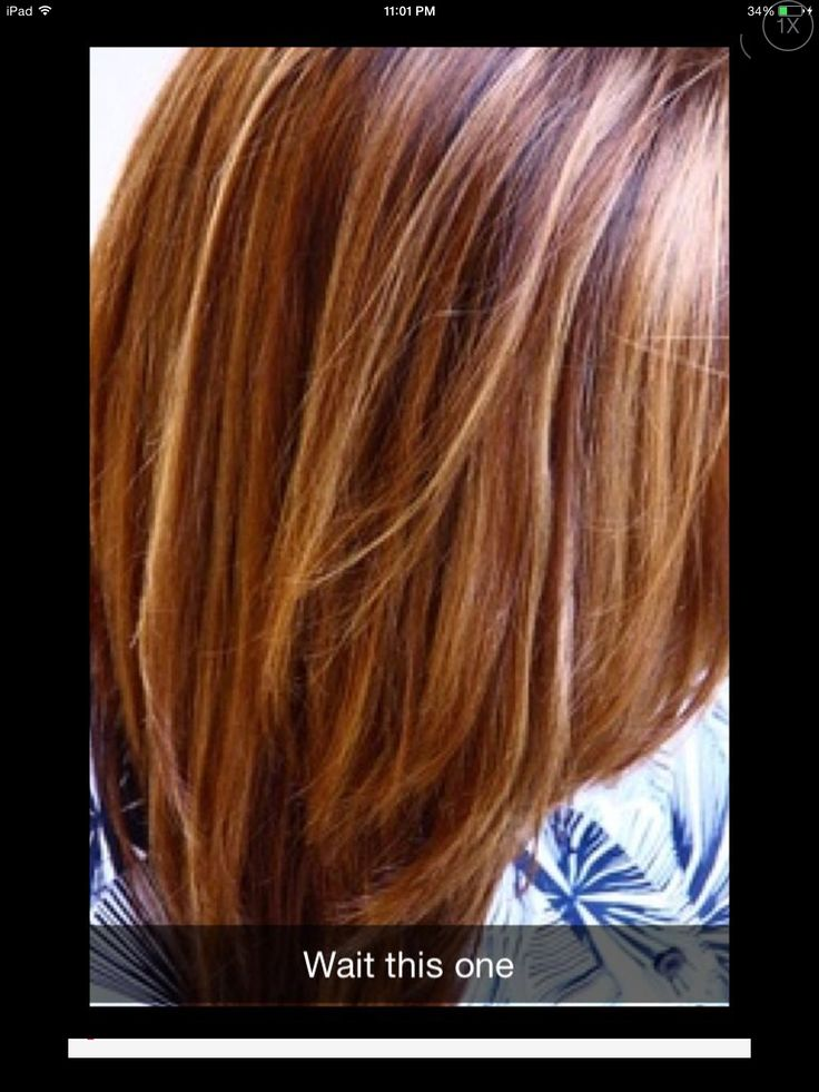 pin by megan schaal on hair brown blonde hair brown
