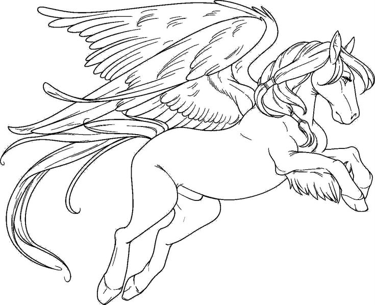 Pegasus Fly With A Sad Face