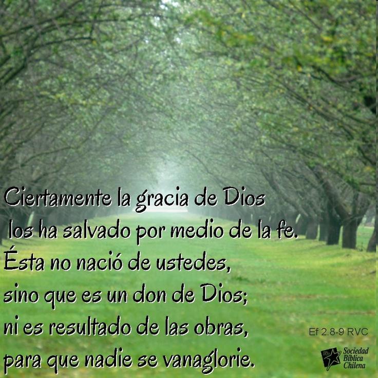 Versiculos De La Biblia De Fe: 48 Best Versiculos De Biblia Images On Pinterest