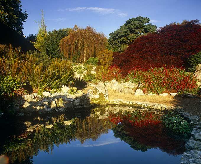 Emmnets Garden