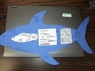 Here's a nice idea for creating an ocean food chain. Includes links to downloadable images.