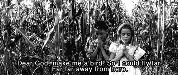 """Make Me A Bird So I Can Fly Far Far Away From Here"