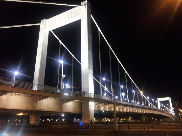 Erzsebet Bridge at night-Budapest, Hungary