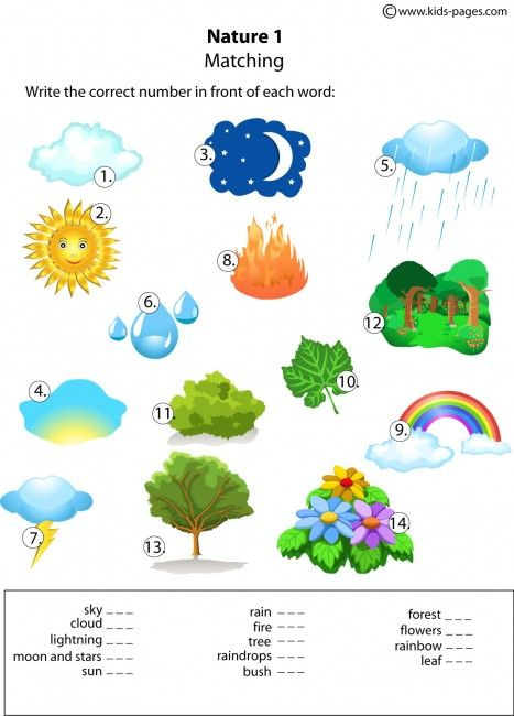 Nature Matching 1 worksheets